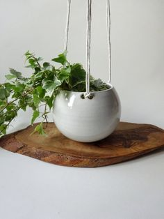 Hanging Planter  Hanging pot for small plants  Shiny by viCeramics