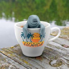 Tee-Robbe