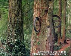 boy chained his bike to a tree when he went to war in 1914. he never returned. his parents left the bike there as a memorial.