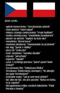 Polish Memes, Polish Language, Weekend Humor, Funny Mems, Science For Kids, Read News, Wtf Funny, Creepypasta, Man Humor