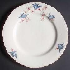 Bluebird dishes