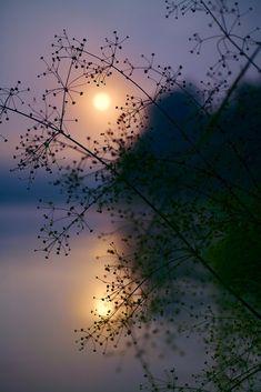 Beautiful Moon, Beautiful World, Beautiful Images, World Of Color, Pics Art, Nature Wallpaper, Belle Photo, Beautiful Landscapes, Nature Photography