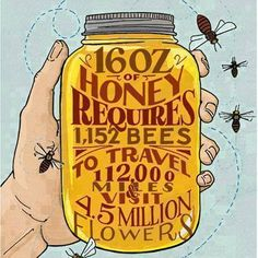Several studies have shown that organic farming is beneficial for bees health. More here: http://www.cornucopia.org/2014/06/higher-pollinator-biodiversity-organic-farms #pollinator #biodiversity #organic The Cornucopia Institute