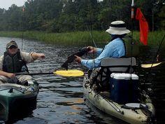 Beginner tips for kayak fishing
