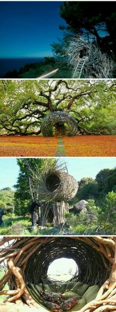 I soooo want a  nest. when i strike it rich.