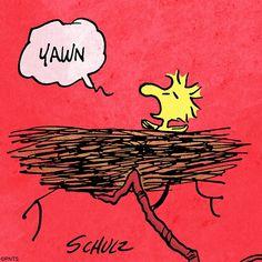 Woodstock is my baby. Peanuts Cartoon, Peanuts Snoopy, Peanuts Comics, Charlie Brown Christmas, Charlie Brown And Snoopy, Woodstock Bird, Peanuts Characters, Cartoon Characters, Snoopy Quotes