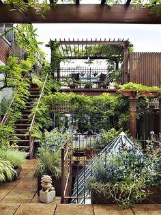 Enchanted garden. Apartment living.