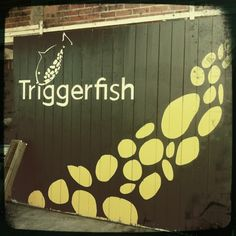 Triggerfish Brewing in Somerset West, Western Cape Very relaxed vibe, kids very welcome and big grass area outside to run around