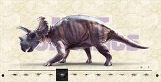 12 Lifelike dinosaurs. (see blog)