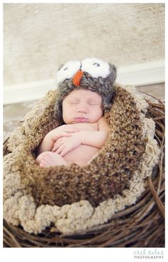 Newborn Pictures | Castle Rock, Colorado Photographer
