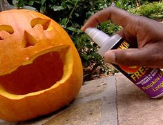 Make your Halloween Pumpkin Carving Last - Spray a mixture of bleach and water on the inside of your fresh pumpkin daily (or coat the inside w/ petroleum jelly) to keep mold and dehydration at bay. Fröhliches Halloween, Adornos Halloween, Holidays Halloween, Halloween Pumpkins, Halloween Decorations, Halloween Tricks, Halloween Costumes, Monster Party, Holiday Crafts