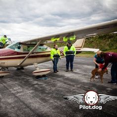 #LandmarkAviation line crew takes care of us at #KMQS Chester County Airport after landing with dogs on dog rescue flight. http://pilot.dog #aviation #pilotnpaws #instaaviation #instagramaviation #dog #dogrescue #pilotdog #pet #pilot #instagrampilot #instapilot #instadog #foreverhome #rescuedog #dogs #dogsofinstagram #rescuepetsofinstagram
