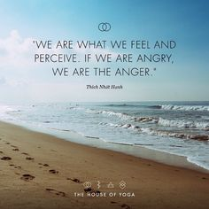 """We are what we feel and perceive. If we are angry, we are the anger."" — Thích Nhất Hạnh"
