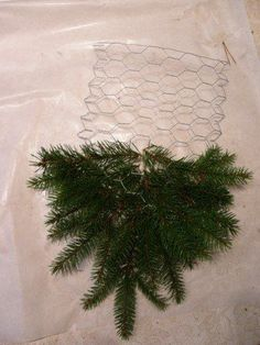 Christmas Holidays, Christmas Crafts, Xmas, Christmas Ornaments, Projects To Try, Herbs, Wreaths, Crafty, Holiday Decor