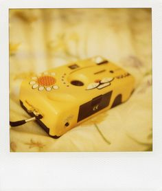 My Holga K202! I seriously love this camera so much, it makes loud noises to attract my cats attention, which works very well. Though it should be noted, only the white one make cat noises. The yellow one makes toy noises. #Holga #cat #photography #camera #film #cute