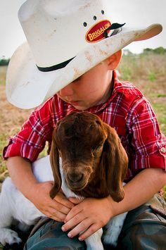 Country little boy and goat . . a baby goat acts a whole lot like a puppy . . I used to raise them. . .loved them.