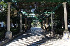 alameda apodaca Sidewalk, Cities, Fotografia, Side Walkway, Sidewalks, Pavement, Walkways