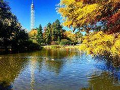 Il Parco Sempione è bello in tutte le stagioni #milanodavedere foto di  : @la_ali Milano da Vedere