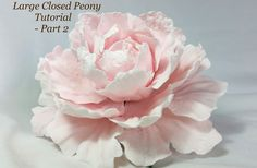 How to make a standard gumpaste peony. This tutorial has been split into 2 videos. Please watch part 1 first. Id love to see your finished peonies :) www.cha...