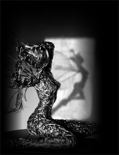 Dreams of Venus, amazing wire sculpture artist Robin Wight.  check his website out www.fantasywire.co.uk