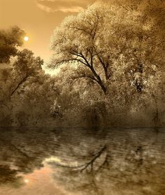 Image result for Peter Holme III Posters