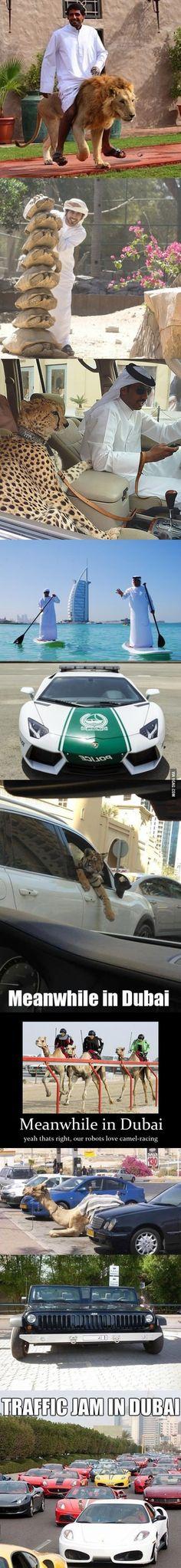 Meanwhile in Dubai...