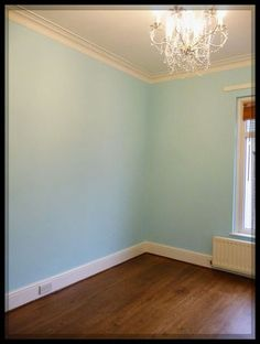 Dulux Javan Dawn 5 paint, under electric light (this is the colour we're going with for our study)  Kool Kitty Musings: Vene, Vidi, Visa!