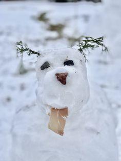 Winter Fun, Snowman, Outdoor Decor, Home Decor, Decoration Home, Room Decor, Snowmen, Home Interior Design, Home Decoration