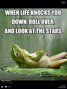 Frog saying