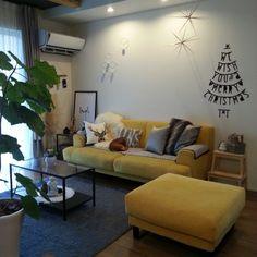 Mayu..さんの、リビング,ポスター,IKEA,シンプル,モノトーン,ムートン,レターバナー,クリスマスディスプレイ,ニトリのクッションカバー,楽天で買ったもの,しまむらのラグ,グリーンのある暮らし,犬と暮らす,グレー好き,こどもと暮らす,黄色いソファ,のお部屋写真