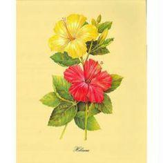 Image 3D Fleur - Hibiscus jaune et rouge 24 x 30 cm