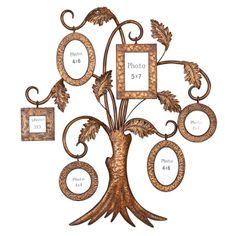 16 Best Family Tree Frames Images Family Trees Family Tree