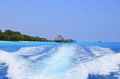 Travel the Life: REETHI BEACH - UN RESORT PARA DISFRUTAR DE LO MEJOR DE LAS MALDIVAS Beach Resorts, Opera House, Building, Outdoor Decor, Travel, The Maldives, Beach, Voyage, Buildings
