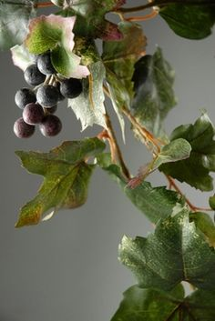 """5.99 SALE PRICE! . Grape Leaf Garland 6 foot with grape clusters .99 each / 6 for  each. 6' long x 9"""" wide leaves range in size from 3.75"""" long..."""