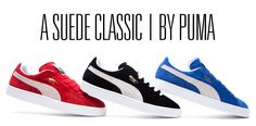 stay classy puma. #puma #pumasuede #sneakers #fashion #graphicdesign