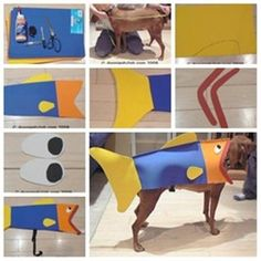 DIY Fish Halloween Costume for Dog 1