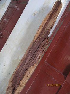erosian teak stand tinggi 158 cm inbox / Ardi 0812.2284.470 / Cahya 0813.9372.1843 Blog : https://lawasanhouseofvintage.wordpress.com/ Pinterest : La Wasan #lawasan #lawasanhouseofvintage #vintage #barangkuno #erosiwooden #erosianteakstand