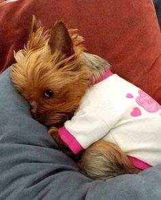 Não quero acordar eu quero ficar aqui e dormindo um monte tabom.