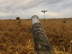 Waterfowl Hunting in North Dakota  My favorite trip every year for 18 yrs!!