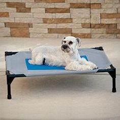 Give your dog a cool place to enjoy the outdoors this summer with the Cool Pet Cot.