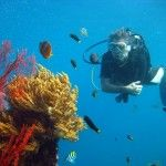 SCUBA DIVING -   I'm a PADI Dive Instructor since 2004, teaching around SE Asia. Here are my recommendations for diving in Thailand, Malaysia, Bali & beyond...  http://www.lashworldtour.com/category/scuba-diving