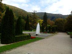 Park u hotelu, místo - Rájecké Teplice, Slovenská republika