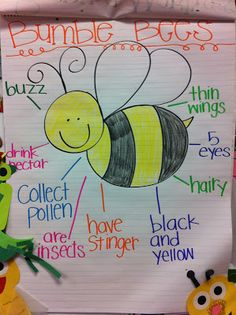 Bee Anchor Chart also charts for praying mantis firefly butterfly- a cuter twist on athought web Kindergarten Science, Preschool Lessons, Preschool Classroom, Classroom Activities, Preschool Bug Theme, Preschool Writing, Teaching Science, Preschool Ideas, Insect Crafts