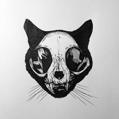 skull, art, and b&w image