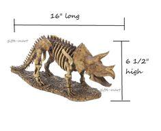 "LARGE 16"" Jurassic TRICERATOPS Dinosaur skeleton learning model statue sculpture #genericdinosaurteachinglearningmodels #Modern"