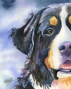 Print of Bernese Watercolor by Dog Art Studios