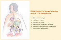 Development of female infertility from a TCM perspective