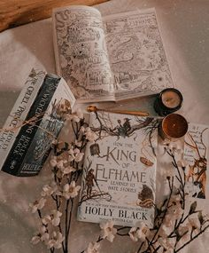 Bookstores, Libraries, Ballerina Painting, Little Library, Holly Black, Book Aesthetic, Book Nooks, Bibliophile, Bookstagram