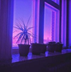 35 Ideas For Plants Aesthetic Purple Violet Aesthetic, Plant Aesthetic, Aesthetic Colors, Aesthetic Black, Aesthetic Light, Aesthetic Grunge, Pastel Purple, Purple Haze, Shades Of Purple