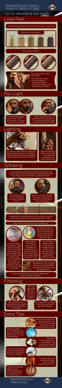 Cigar How to Taste a Cigar & Flavor Wheel (Infographics) - Buy Cigars Online Cigars And Whiskey, Good Cigars, Pipes And Cigars, Cuban Cigars, Bourbon Whiskey, Cigar Humidor, Cigar Bar, Cigar Club, Cigar Boxes